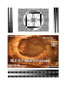 3D Fake Sonogram 5 to 7 Weeks