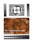 3D Fake Sonogram 6 to 9 Weeks