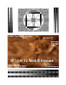 3D Fake Sonogram 11 to 12 Weeks