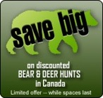 Discounted Bear and Deer Hunts in Canada