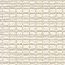 Kasmir Fabric Abaca Io Vellum 1413 100% Acrylic USA 12,000 Wyzenbeek Double Rubs H: 6/8 inches, V:3/8 inches 54 - My Fabric Connection - Kasmir