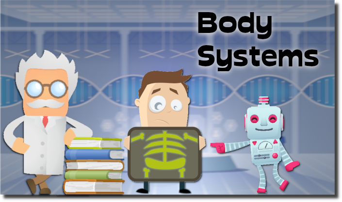 -bodysystems-banner02.png
