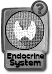 -button-endocrinesystem-v3-gray.png