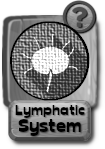 -button-lymphaticsystem-v3-gray.png