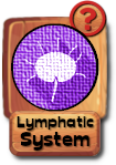 -button-lymphaticsystem-v3.png