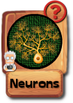 -button-neurons-v3.png