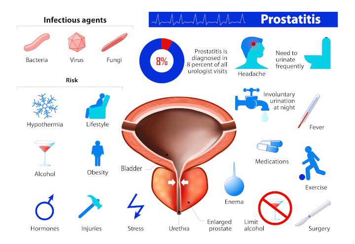 15-prostate06.jpg