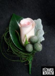 stephanie buttonhole