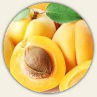 Blenheim Apricot White Balsamic Condimento