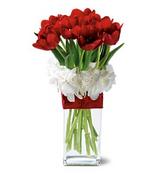 Graceful Tulips