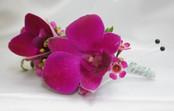 Fuchia Orchid Boutonniere