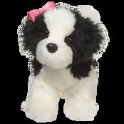 Poofy Shih-Tzu Black and White