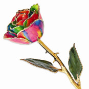 Real 24K Trimmed Preserved Rainbow Rose