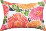 Gerbera Daisy Striped Pillow