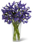 Iris Riches Bouquet