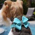 Nouveau Bow Ultrasuede and Swarovski Crystal Dog Collar - Tiffi Blue