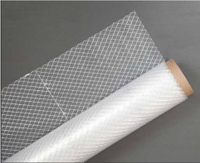6 Mil 20x100 String Reinforced UV Rated Poly Sheeting