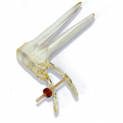 Buy Prospec Cusco Vaginal Speculum, Medium/Long, Box of 20 (F.300.05) sold by eSuppliesMedical.co.uk