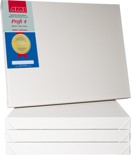 AMI Canvas 40cm x 40cm, Pack of 2