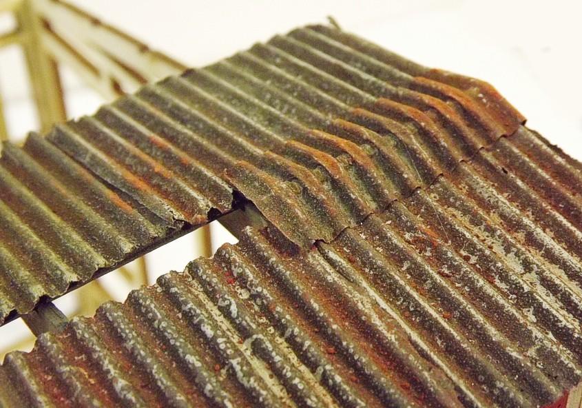 spine-roof4.jpg