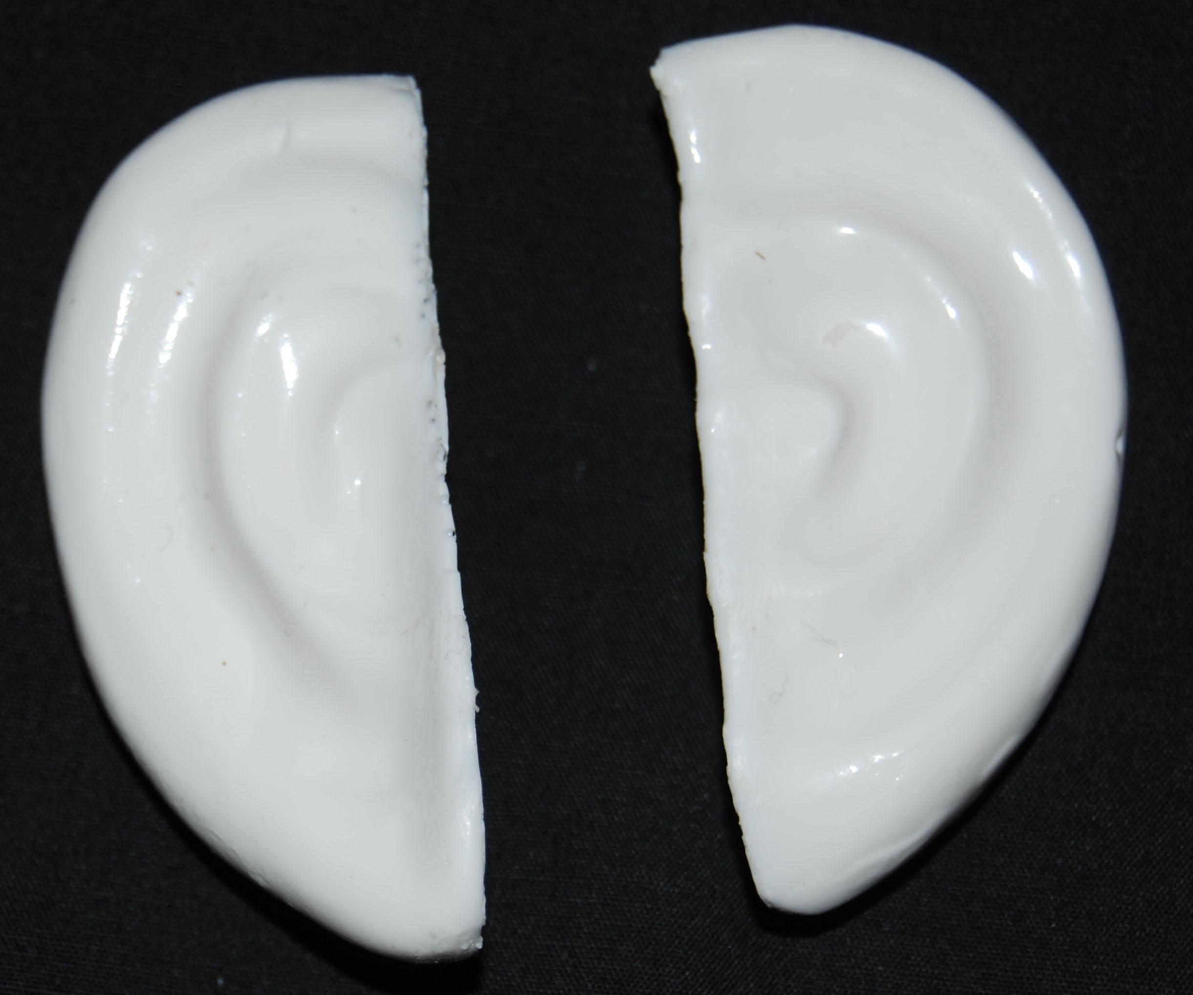 ears-3t-b-2.jpg