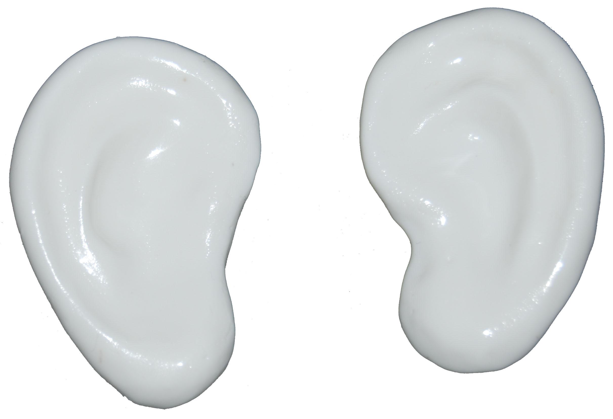 ears-3ta.jpg