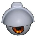 eyenlid-150px-w.jpg
