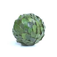 Preserved Laurel Leaf Ball