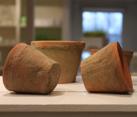 Terracotta Seedling Pots