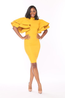 Classic Mustard Fitted Dress-SOLD OUT