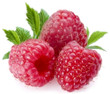 Raspberry (Hangsen) E-liquid