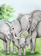 elephant art and prints