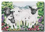 121 sheep  card
