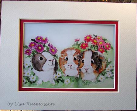 3 guinea pigs