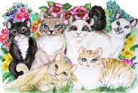 cats limited edition notecard