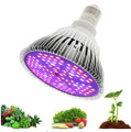 Full Spectrum Led Grow Light 80W