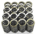 Carpenter Valve Springs Suzuki GSX1300R Hayabusa (99-15)