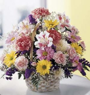 This cheery basket is a welcome sight. Bright and fluffy pink carnations, lavender and yellow daisy pompoms, with white and purple accents are arranged in a handled basket. Its the perfect gift for any occasion.