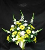 A mix of white and yellow flowers to brighten, a sad time. Gladioli or Snapdragons, sunny yellow Gerbera, Daisies, and Mums. We can deliver all over Toronto and the GTA from our Toronto/North York flower shop.