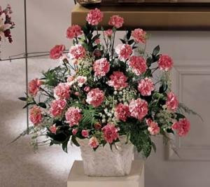 Express your sentiments of peace with this Lovely pink arrangement, a natural mix of carnations, Baby Breath and greens.