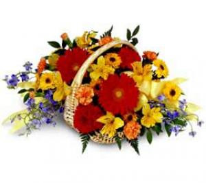 A basket of bright yellow Santini Mums, red Gerbera, yellow Alstroemeria, blue Limonium, blue Delphinium, and red Carnations.