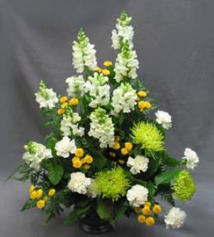 A pewter-coloured vase holds this yellow and white combination. Colours may be changed to suit your requirements. White Snapdragons, green Rivert Chrysanthemums, white Carnations, and sunny yellow Statesman Chrysanthemums make a one-sided arrangement