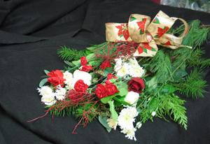 Starburst Chrysanthemums, Blueberry bush, red Carnations, a red Christmas Rose, and our lovely seasonal greenery make a perfect gift.