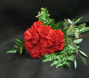 Happy red Carnations, to celebrate the New Year. Prosperity, health, happiness, and good luck. Chinese New Year.