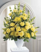 Let this splendid arrangement express your utmost sympathies. Luscious yellow blooms - roses, carnations, snapdragons, and spider chrysanthemums - are beautifully composed and accented by Bells of Ireland. Design is one-sided and is appropriate to send to the funeral home or service.