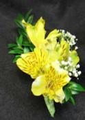 Yellow Alstroemeria corsage