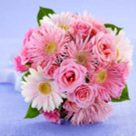 A Lovely and playful bouquet. Pink spider Gerbera daisies, pale pink Gerbera daisies and pink spray roses are a wonderful combination.