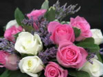 One dozen short-stemmed Roses (35-40 cm) boxed with assorted greenery. Available in mixed colours only Florist choice of the freshest in stock, at time of ordering, usually pink, yellow, cream, and white. NO RED at this PRICE.