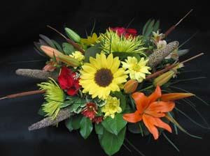 The crisp Fall air heralds a new harvest. Give thanks to Mother Nature. Send Hatcher's Sunny Sunflower arrangement with Asiatic Lilies, Sunflowers, Millet, yellow Dasies, Leucadendron, Eucalyptus, and Bull Rushes. Designed by Bob Hatcher.