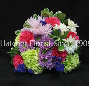 This bouqet is sure to please everyone. A bright selection of eco flowers hand delivered with care by Hatcher's Florist.